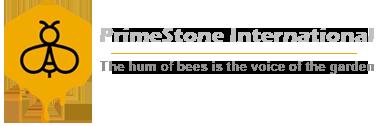 Prime Stone International